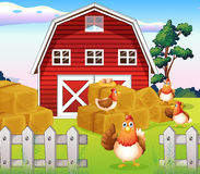 Chickens at the farm near the red barnhouse. Illustration of the chickens at the farm near the red barnhouse stock illustration