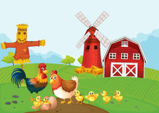 Chickens on the farmland Royalty Free Stock Photo