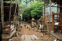 Chickens infront of an Old House  in Hanoi, Vietnam Royalty Free Stock Image