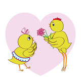 Chickens in love Royalty Free Stock Photo