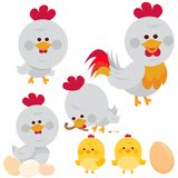 Chickens, rooster and chicks. Vector illustration Royalty Free Stock Image