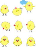 Chickens in set. Illustration - set from 9 chickens in various poses. Cartoon Stock Photo