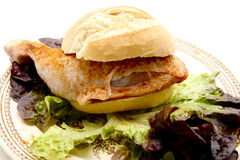Chickens thighs with rolls. Raw chickens thighs seasoned with rolls Royalty Free Stock Photography