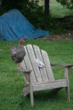 Chickens on chair Stock Photography