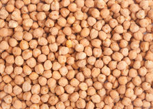 Chickpea background. Bunch of chickpeas forming a background Royalty Free Stock Photography