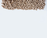 Chickpea at border of image with copy space for text. Royalty Free Stock Image