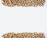 Chickpea at border of image with copy space for text. Stock Photos