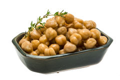 Chickpea Royalty Free Stock Image
