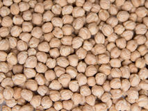 Chickpea. Dry Chickpea background - vegetarian food Stock Image