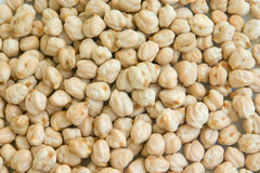 Chickpea, garbanzo, gram Royalty Free Stock Image