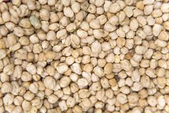 Chickpea on market in Morocco Royalty Free Stock Photography