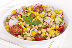 Chickpea Salad. A healthy salad of chickpeas with tomatoes, radishes, green onions, cucumber and yellow capsicum, with a lemon vinaigrette dressing, garnished Royalty Free Stock Photos