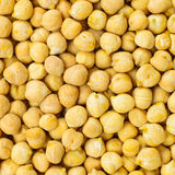 Chickpea seeds background or texture raw food Stock Photos