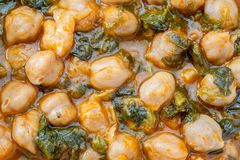 Chickpea stew with spinach potaje. royalty free stock photo