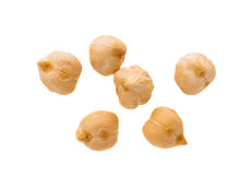 Chickpea  Stock Images