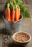 chickpeas морковей свежие стоковые фото