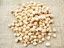 Chickpeas Stock Image