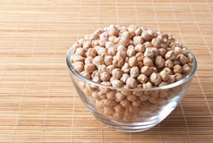 Chickpeas Obraz Stock