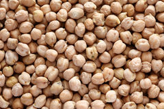 chickpeas Photos stock