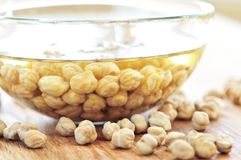 Chickpeas royalty free stock images
