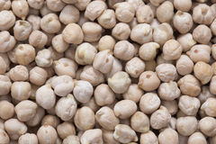 Chickpeas background closeup Stock Photography