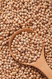 Chickpeas background with large spoone full with seed Royalty Free Stock Photo