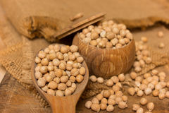Chickpeas Royalty Free Stock Photography