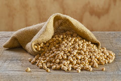 Chickpeas in Burlap Sack Royalty Free Stock Photography