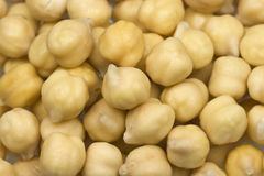 Chickpeas or garbanzo beans. Small handful of chickpeas or garbanzo beans on white background royalty free stock images