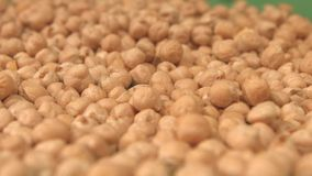 Chickpeas on a green background. Slow motion. Close-up. Pan. 2 Shots stock video footage