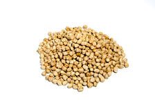 Chickpeas. Isolated on White Background Royalty Free Stock Photo