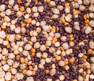Chickpeas and lentils Royalty Free Stock Photography