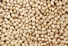 Chickpeas Royalty Free Stock Image