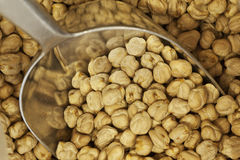 Chickpeas in a sack. Close up shot of chickpeas in a sack Stock Images