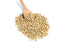 Chickpeas and spoon Royalty Free Stock Photography