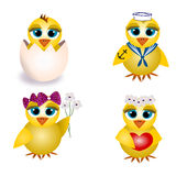 Chicks Royalty Free Stock Images