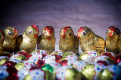 Chicks and chocolate eggs for Easter holidays Stock Photo