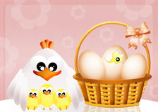 Chicks come out of the egg Stock Image