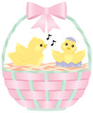 Chicks in an Easter Basket. Two yellow chicks sit in a pink and green Easter basket. An older chick sings to a newborn chick Stock Photo