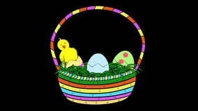 Chicks In Easter Basket-Animated-Transparent stock footage