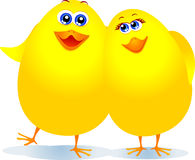 Chicks in love Royalty Free Stock Image
