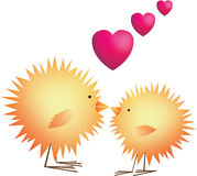 Chicks in love on valentines and easter Stock Photo