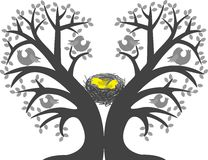 Chicks in the nest. In the bird tree branch Stock Photo