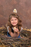 Chicks in nest of twigs Stock Photo