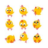 Chicks. Small yellow chicks fun on a white background Royalty Free Stock Images