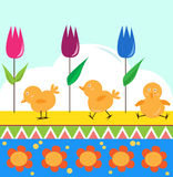 Chicks and Tulips. Vector illustration of cute chicks and tulips on a decorative background. Eps10 Royalty Free Stock Images