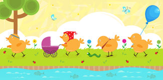 Chicks on a Walk. Four baby chicks strolling on the riverbank. Eps10 Stock Photo
