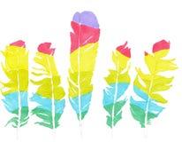 Chicle de las plumas Imagen de archivo libre de regalías