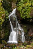 Chico cascade I. Waterfall as part of the natural national park of mineral del chico, located in the mexican state of hidalgo stock photo