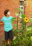 Chico del campo en el jardín con el girasol Foto de archivo